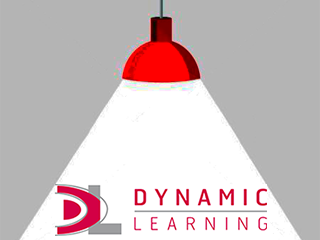 A Spotlight On Dynamic Learning